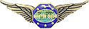 """1½"""" MASTER GUIDE 6 STAR EAGLES WINGS PIN"""