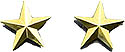 "¾"" Directors or Coordinators Gold or Silver Star Set"