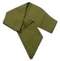 3 Honor Wide GREEN Sash - Adult
