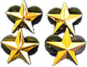 COORDINATOR - CONF YOUTH DIR - GOLD 4 STAR PIN SET - 3/4""
