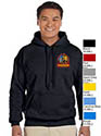 - Adult Pull Over Gildan Hoodie Sweatshirt - pocket or full front logo
