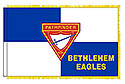 PF CUSTOM CLUB NAME ON FLAGS - INDOOR FRINGE POLE POCKET FLAG